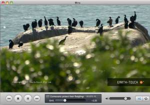 Media player Miro Screenshot