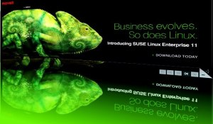 SUSE Linux Enterprise 11