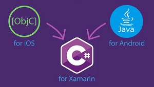 Xamarin mobile app development platform